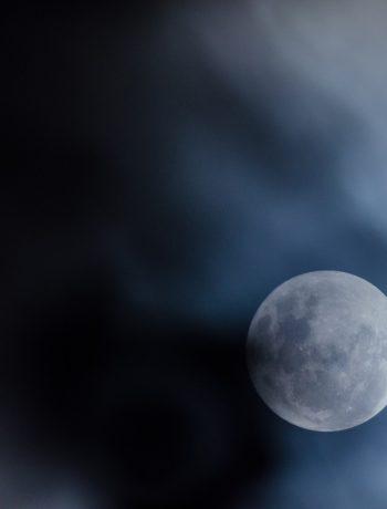 Die Anziehungskraft des Mondes: Gärtnern mit dem Mondkalender