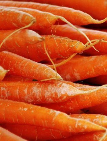 Naturkosmetik-Erfahrung: Diaderma-Karottenöl im Test