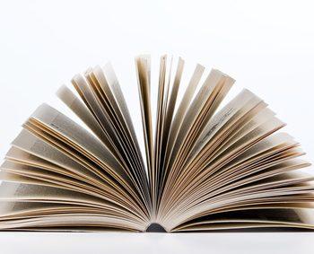 Der Artikel dient als kleines Kräuterlexikon.