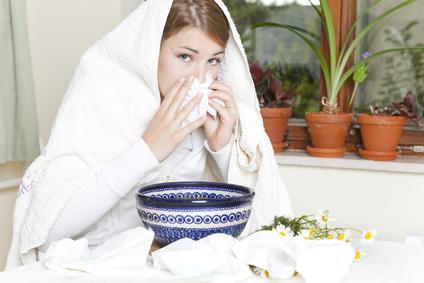 Der Artikel nennt Kräuter zum Bekämpfen einer Erkältung.