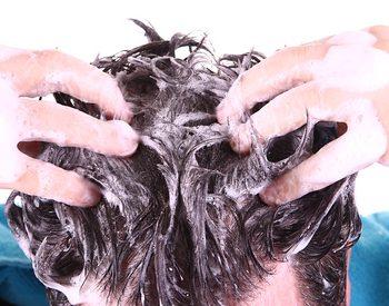 Artikelgebend sind sind Wellness-Kräuter-Shampoos.