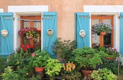 Robust und lecker – die besten Balkon-Kräuter