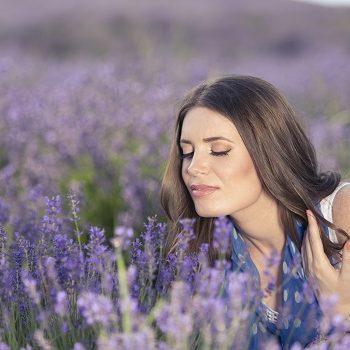 Die Heilpflanze im August: Lavendel