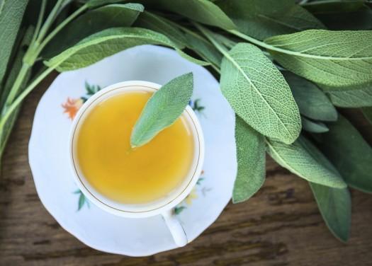 Selbst gemachte Kräutertees: Gesundheit zum Trinken