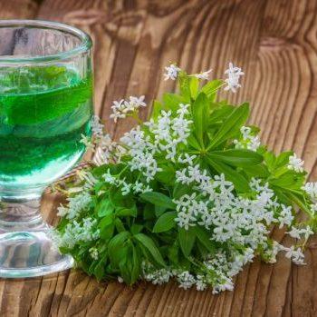 Schön grün – leckere Bowle mit dem Mai-Kraut Waldmeister