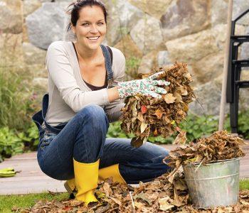 Garten im Oktober: Das ist jetzt zu tun