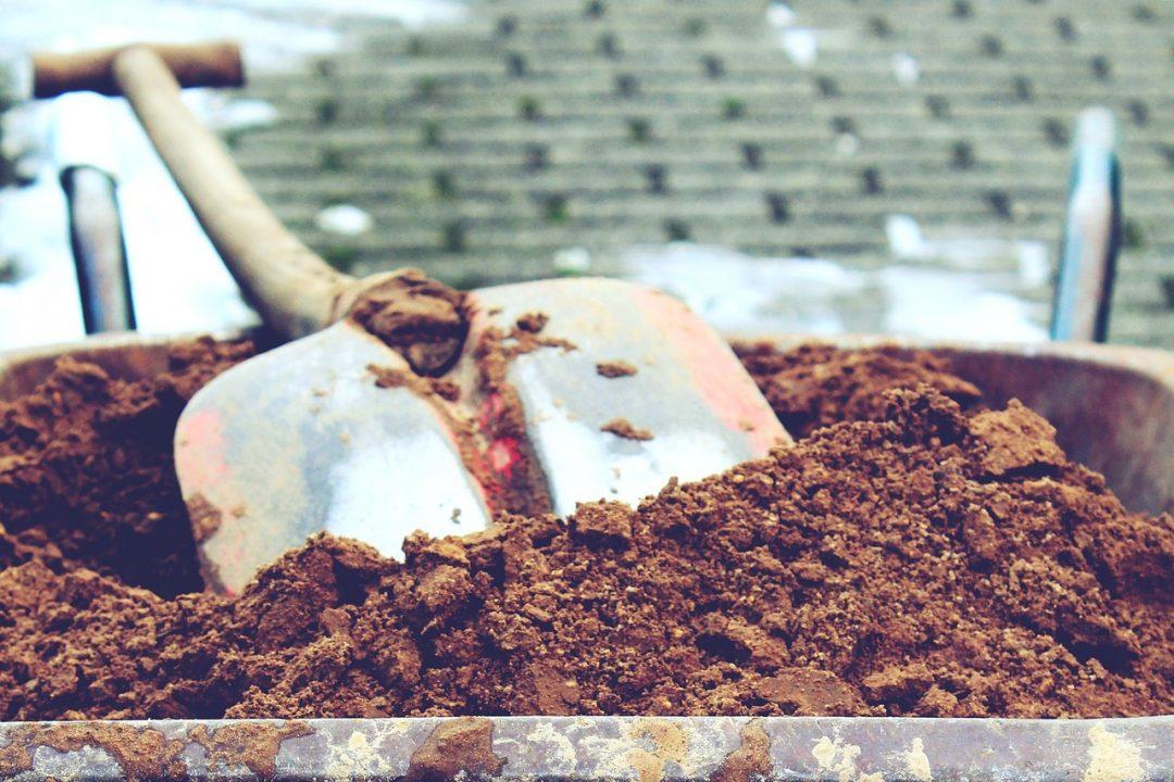 Gartenarbeit im Januar: Wie ihr die Vorfreude auf die Gartensaison nutzt