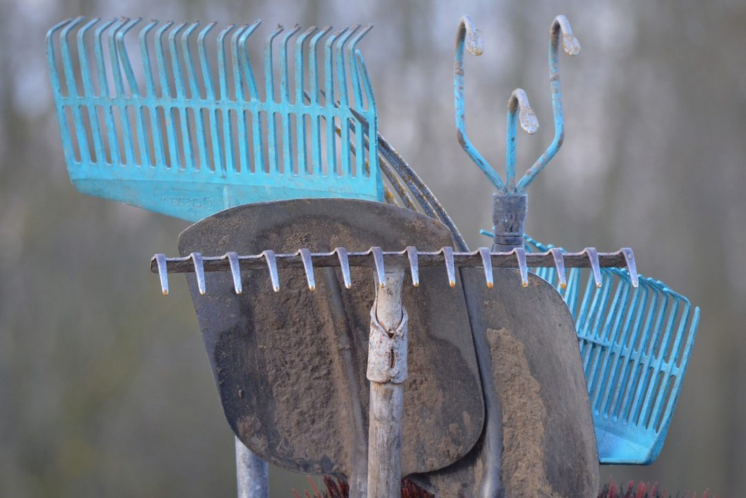 Start der Gartensaison: So macht ihr euer Gartenwerkzeug einsatzbereit