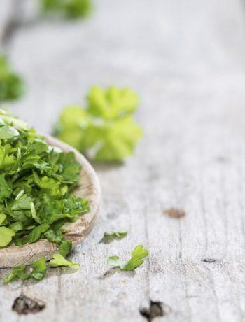 Kraeutermischung fuer Salat