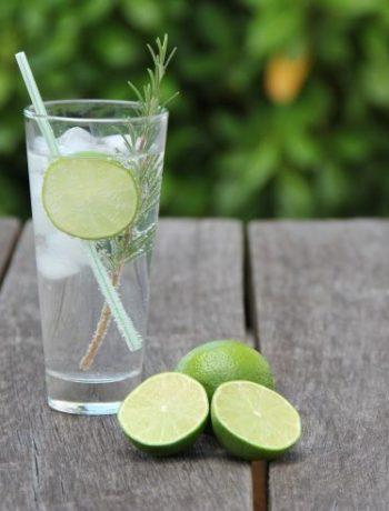 Wie Botanicals dem Gin Geschmack verleihen