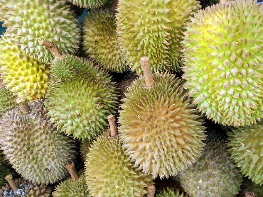 Tropische Stinkfrucht: Durian riecht ekelhaft, schmeckt aber himmlisch
