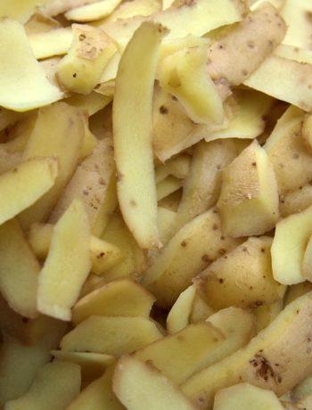 Obst- und Gemüsereste verwerten statt entsorgen